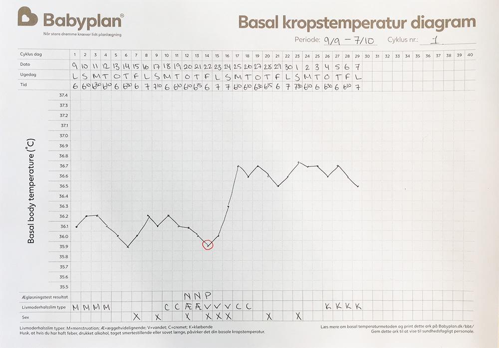 Se BBT diagram eksempel her