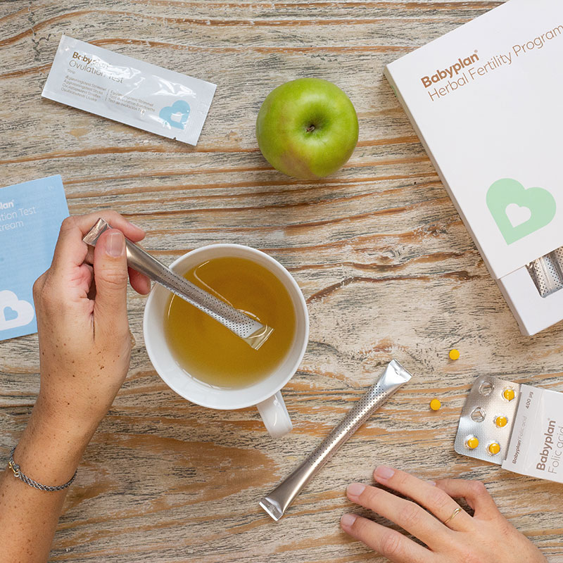 Herbal fertility programme